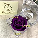Forever Rose in Acrylic Crystal Ring Box Handmade Real Preserved Fresh Flower Best Romantic Gift for her Valentine's Day Mother's Christmas Anniversary Unique Surprise Mom Wife NOT Silk (Purple)