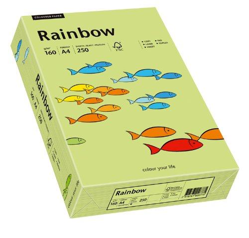 Papyrus 88042615 Drucker-/Kopierpapier bunt, Bastelpapier Rainbow: 160 g/m², A4 250 Blatt, leuchtend grün