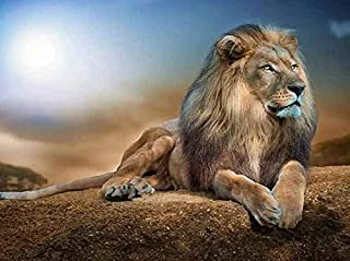 DIY 5D Fashion Diamond Painting Lion Home Decoration Living Room Decorative Painting Manual 11.8X15.7in