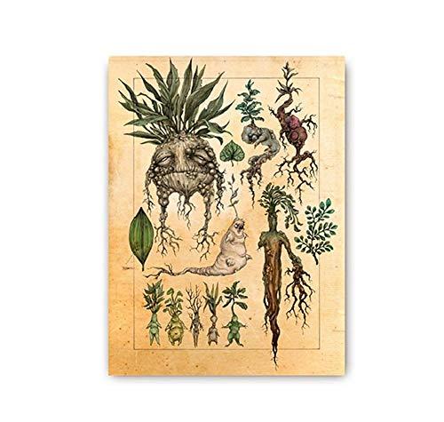 WJY Nette Mandrake Pflanze Dekor Leinwand Malerei Wandbild Classic Movie Poster Kinderzimmer Decor 60x80cm No Frame