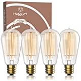 Vintage Incandescent Edison Light Bulbs: 60 Watt, 2100K Warm White Lightbulbs - E26 Base - 230 Lumens - Clear Glass - Dimmable Antique Filament ST58 Light Bulb Set - 4 Pack