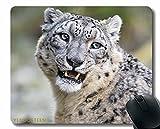 Alfombrilla de ratón Antideslizante, Siamese Gato Gato hocico 112472 Alfombrilla de ratón Estera