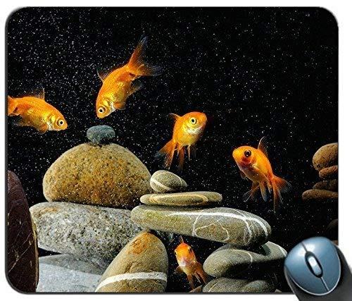 Gaming Mouse Mat, Fisch Aquarium Rocks Schwarzer Hintergrund 78667 Personalisiertes Rechteck-Mauspad, Bedrucktes Rutschfestes Gummi Komfortables, Individuelles Computer-Mauspad