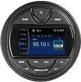 [page_title]-Osculati Marine Radio IPX5 mit 3' TFT Display Bluetooth/DAB/USB Boot 4 x 40Watt Yacht