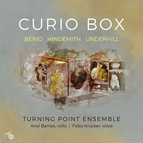 Curio Box