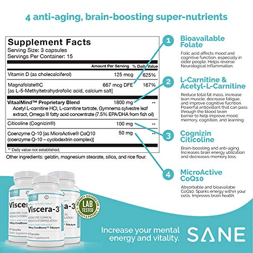 517MFwIlRQL - Vitaae Cognizin Citicoline Memory Supplement - Support for Brain Health with Folate, Vitamin D and COQ10 - Improve Mental Clarity and Focus