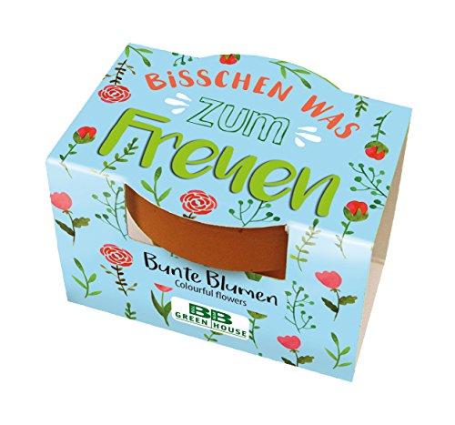 10 Stück Mini-Pflanzset Bisschen was zum Freuen mit Blumensamen