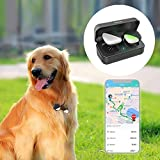 Pet GPS tracker for dogs pets No monthly fee real-time tracking device Anti-lost monitor(Only for Dog)