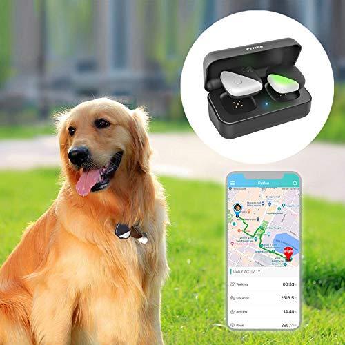 PETFON Haustier GPS Tracker, Echtzeit-Tracking-Gerät, Keine monatliche Gebühr, APP-Steuerung für Hunde Haustiere(Only...