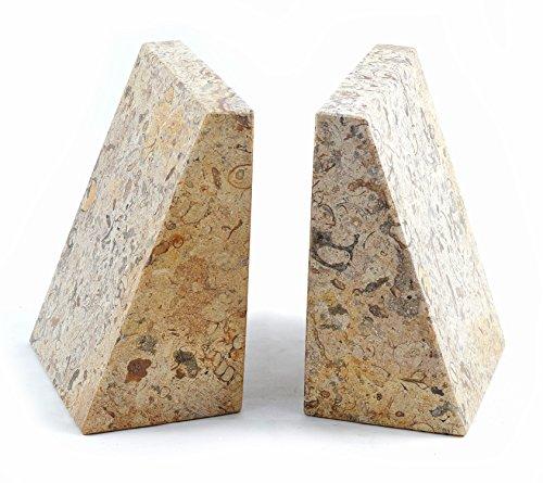 fossilstone Marmor Keil Buchstützen