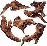 WDEFUN 5 Piece Driftwood for Aquarium 4.5 Inch - 8 Inch Size Driftwood for Decor On Aquarium,Fish Tank,Reptiles Tank.…