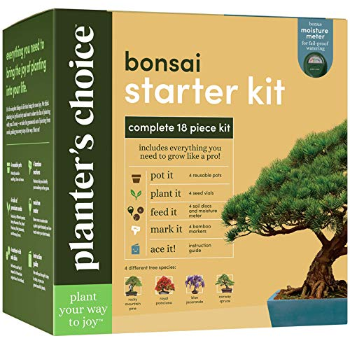 Bonsai Tree Growing Kit - Grow 4 Indoor Bonsai Trees - Plant a Garden from Seeds - Unique Gardening Gifts for Women & Men Gardeners : Unusual Gift Ideas - Adults Gardener Gifts : Plants Starter Kits