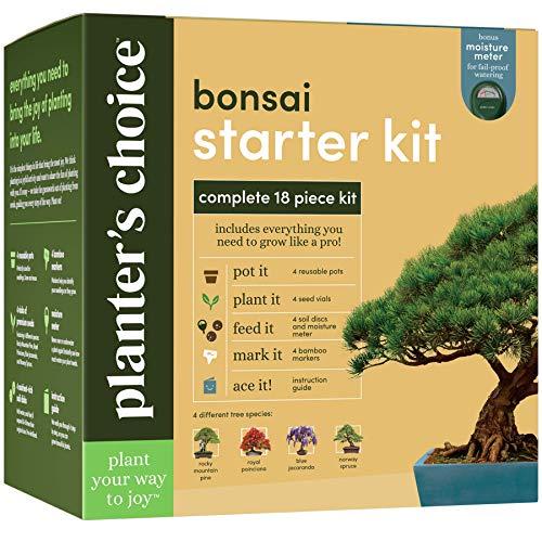 Bonsai Baum Anbausatz - Züchten Sie 4 Innen Bonsai Bäume - Pflanzen Sie einen Garten aus Samen - Einzigartige Gartengeschenke für Frauen- und Männergärtner: Ungewöhnliche Geschenkideen