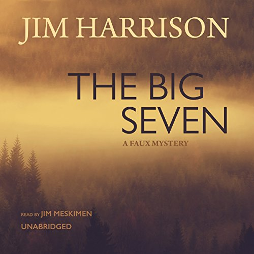 The Big Seven audiobook cover art