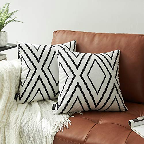 MIULEE Pack of 2, Velvet Soft Solid Decorative Square Throw Pillow Covers Set Cushion Case for Sofa Bedroom Car 20 x 20 Inch 50 x 50 cm