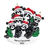 Personalized Bamboo Panda Bear Family of 6 Christmas Tree Ornament 2020 - Parent Child Friend Santa Hat Hold Hand Glitter Green Winter Holiday Tradition Gift Year - Free Customization (Six)