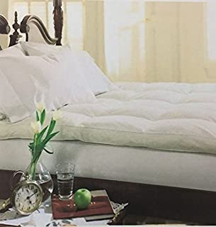Best calvin murphy bed Reviews