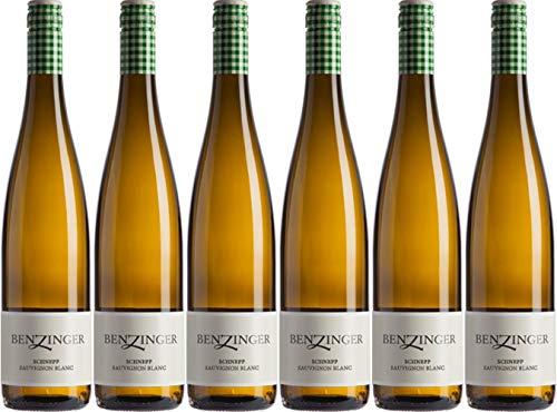 Benzinger Schnepp Sauvignon Blanc Tradition 2018 Trocken Ecovin Bio (6 x 0.75 l)