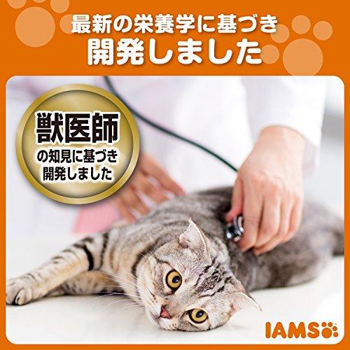 アイムス(IAMS)キャットフード7歳以上用腎臓と下部尿路の健康ケアチキンシニア猫用1.5kg