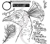 BIRDクリアシリコンスタンプ/DIYスクラップブッキング用シール/アルバム装飾クリアスタンプシートA435