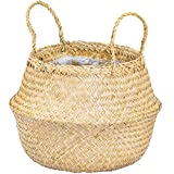 Artera Woven Seagrass Plant Basket - Wicker Belly Basket Planter Indoor with Plastic Liner and Handles, Natural Plant Pot for Fiddle Leaf Fig Tree, Snake Plant and Monstera. (M, Natural- Beige)