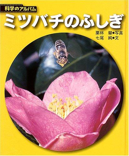 ミツバチのふしぎ (科学のアルバム)の詳細を見る