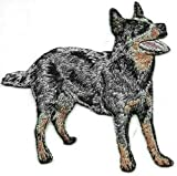 Embroidered Iron On Sew On Patch Black Australian Cattle Dog Breed Great Quality Applique, 3 1/8' x 3 1/4'