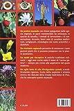 Zoom IMG-1 piante spontanee d uso alimentare