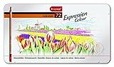 Bruynzeel - 72 lápices de colores en estuche de metal