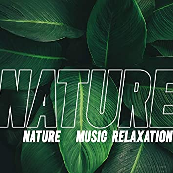 Nature: Music Relaxation, Feel Closeness, Calm Down and Find Peace