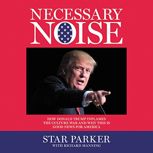 Necessary Noise cover art