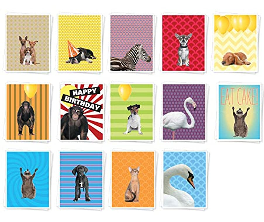 Apartment 2 Cards BESTASSORT16 Set of 14 Assorted Best Selling Mixed Occasion Cards, Multicolor 14 Piece