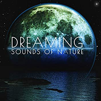 Dreaming Sounds of Nature: 2019 Ambient Piano Music with Beautiful Nature Sounds in the Background for Your Best Sleeping Experience, Rest, Relax, Nice Dreams and Calm Down