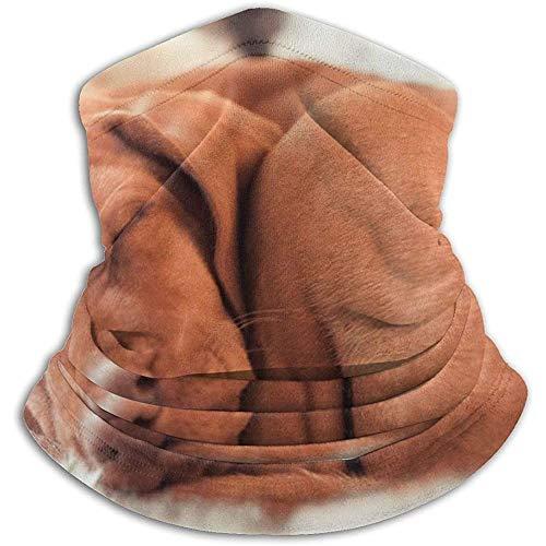 MOTALIN Tiere Jagd Rasse Hunde Traum Ungarischer Zeiger Hund schläft Ungarisch Vizslas Ski Stirnbänder Kaltes Wetter Stirnbänder Halswärmer Fleece Hood Winterhüte