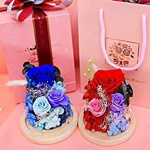 king doo eternal rose 3 heads preserved real rose immortal flowers in glass dome, for teachers day, birthday, wedding, parties and christmas silk flower arrangements