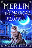 Merlin the Magical Fluff (Kindle Edition)