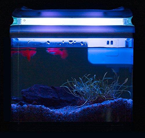 Sweetypet Aquarium: Transport-Fischbecken mit Filter, LED-Beleuchtung und USB, 3,3 Liter (Aquarium-Set) - 9