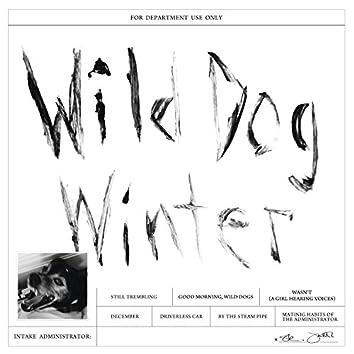 Wild Dog Winter