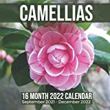 Camellias 16 Month 2022 Calendar September 2021-December 2022: Camellia Japonica Flower Square Photo Date Book Monthly Pages 8.5 x 8.5 Inch