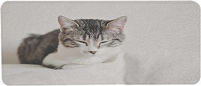 動物 猫 国内-2 洗いやすいキッチンマット 目 眠い 灰色 子猫 ずれない すべり止め 洗える 防音マット 子供 お年寄り 45cm×120cm