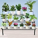 TrustBasket 3 Step Stand for Multiple Plants and Pots Stand, Indoor Shelf Holder Rack, Gardening Stand,Indoor Outdoor (Black)