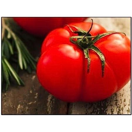 Fresh Premium Beefsteak Tomato Seeds-O 017 25