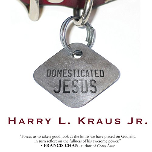 Domesticated Jesus audiobook cover art