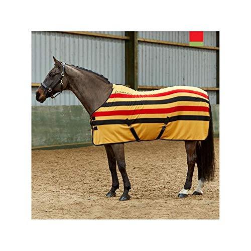 Générique Signature WHT1360 Holywell V2 Striped Fleece Tapis Mixte, Jaune/Gris/Bleu, 9-inch