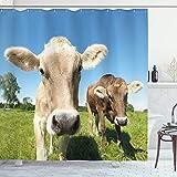 ABAKUHAUS Bauernhoftier Duschvorhang, Close up Kühe, Seife Bakterie Schimmel & Wasser Resistent inkl. 12 Haken & Farbfest, 175x240 cm, Apfelgrün Tan
