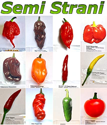 120 Graines De Les 12 Piment Chili Plus Piquant, Savoreux du Monde, Collection 2: Carolina Reaper Red, Bhut Jolokia - Ghost Chili Chocolate, Naga Morich, Scotch Bonnet, Habanero Chocolate, Habanero Orange, Acrata, Cedrino, Thay Pepper, Peter Pepper, Jalapeno, Cherry Bomb Pepper