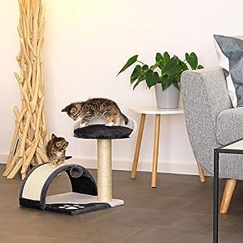 lionto by dibea Arbre à chat arbre à grimper griffoir pour chat hauteur 45 cm gris/blanc