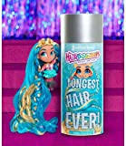 Hairdorables- Longest Hair Ever-Poupée Surprise, Cheveux Super Longs (25 cm) à coiffer, Modèles aléatoires à Collectionner, Jouet pour Enfants dès 3 Ans, HAL00000
