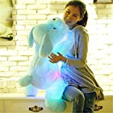Peluche 1pc 50cm Luminous Dog Plush Doll Blue Led Glowing Dogs Juguetes para niños para niña Kidz Regalo de cumpleaños