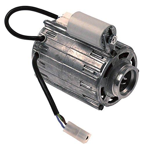 RPM C013728 - Motor de bomba para cafetera Wega-CMA Sphera, VelaElegance, Vela, Atlas, Nova con condensador 8μF 120W 230V 50Hz